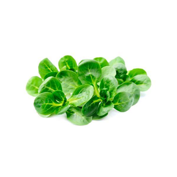 insalata Soncino valeriana